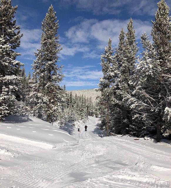 Skiers make first tracks of 2018 season at Cutler Nordic Ski Trails